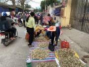 """Thị trường - Tiêu dùng - Chở tỏi tươi nơi khác về đảo """"dán mác"""" trồng tại Lý Sơn bán giá cao"""