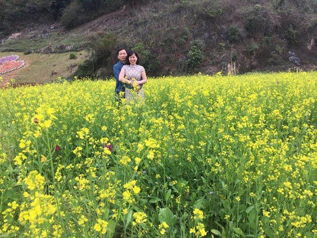 Mãn nhãn ngắm nhìn vườn hoa cải vàng óng trên cao nguyên Mộc Châu