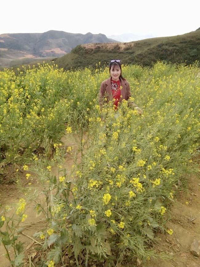 Mãn nhãn ngắm nhìn vườn hoa cải vàng óng trên cao nguyên Mộc Châu - 3