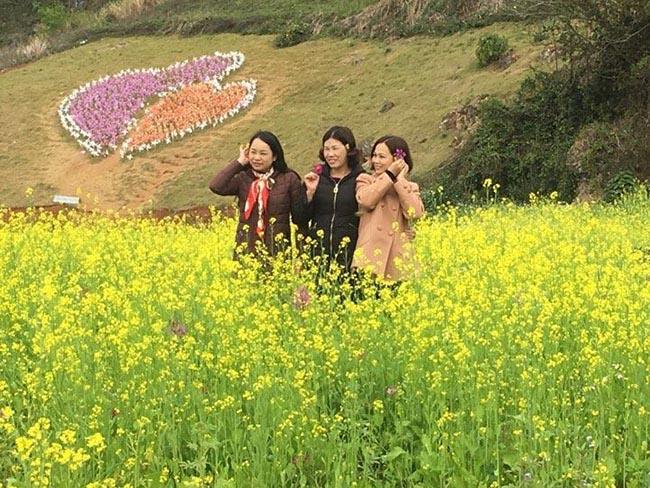 Mãn nhãn ngắm nhìn vườn hoa cải vàng óng trên cao nguyên Mộc Châu - 5