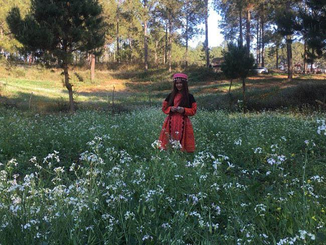 Mãn nhãn ngắm nhìn vườn hoa cải vàng óng trên cao nguyên Mộc Châu - 8
