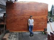 """Tin tức trong ngày - """"Siêu"""" sập gỗ Cẩm đẹp như bức bình phong xuất hiện ở Bắc Ninh"""