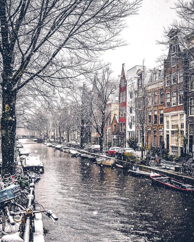 Vương quốc mùa đông thêm lung linh ảo diệu dưới trời mưa tuyết - 3