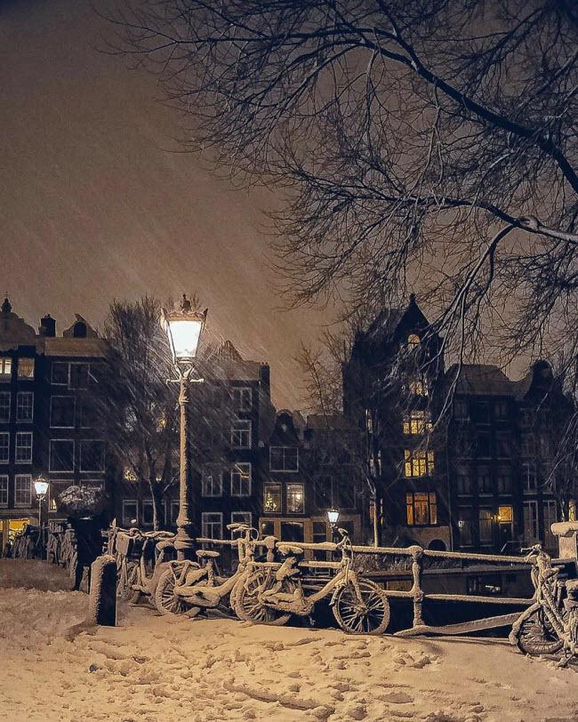 Vương quốc mùa đông thêm lung linh ảo diệu dưới trời mưa tuyết - 4