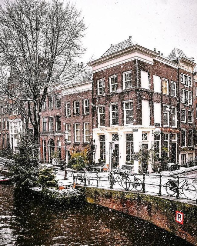 Vương quốc mùa đông thêm lung linh ảo diệu dưới trời mưa tuyết - 10