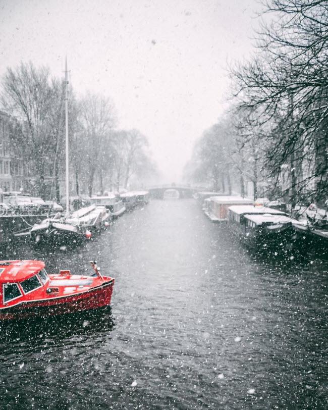 Vương quốc mùa đông thêm lung linh ảo diệu dưới trời mưa tuyết - 9