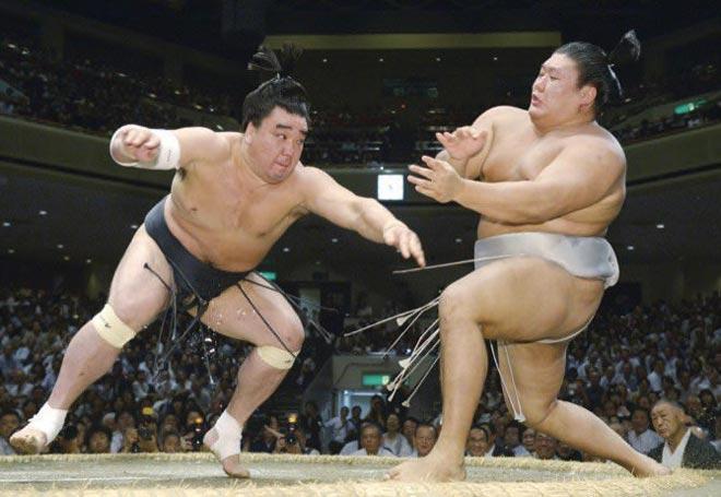 """Thế giới ngầm sumo dậy sóng: Hoen ố vì """"kẻ bệnh hoạn"""" và côn đồ 1"""