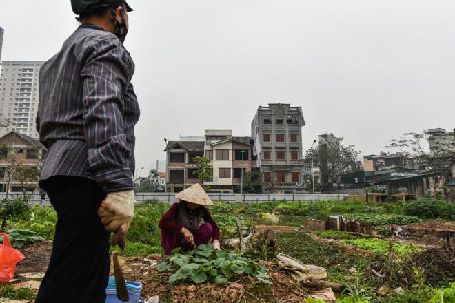 Phá dỡ biệt thự sai phép của gia đình cựu Thiếu tướng Nguyễn Thanh Hóa - 6
