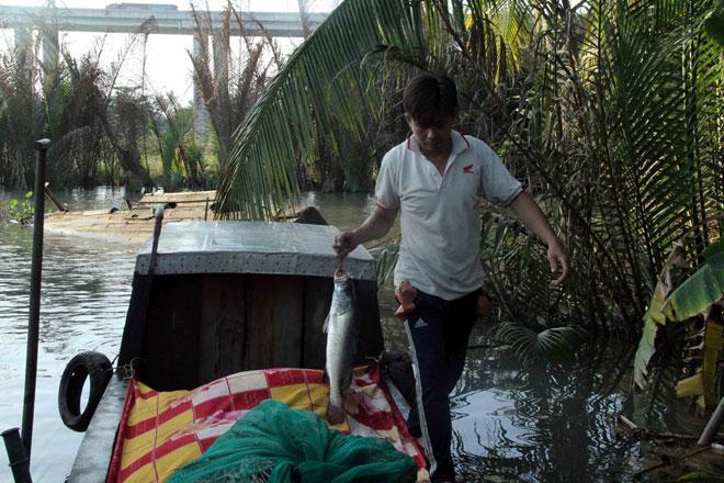 """Theo chân thợ săn cá """"khủng"""", từng 2 lần được lộc trời ban ở Sài Gòn - 17"""