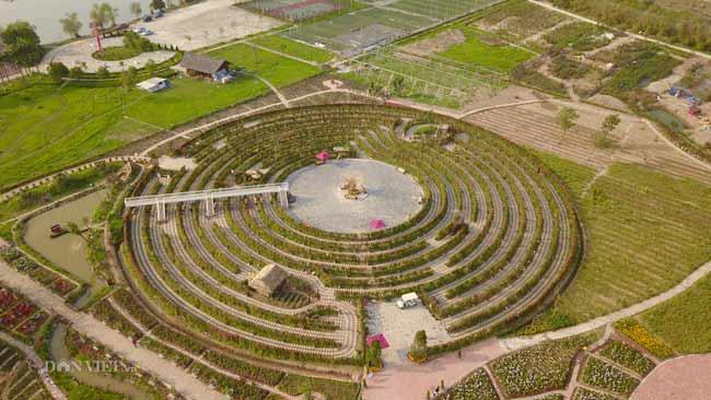 Clip: Mê cung hoa lớn nhất Việt Nam đẹp như cổ tích ở Hà Nội
