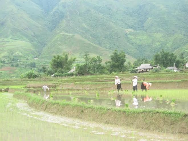 Khám phá Lai Châu qua 7 địa danh đẹp, độc, lạ đến nao lòng - 4