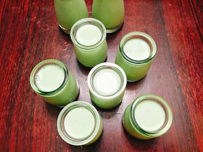 Cách làm sữa chua lá dứa thơm mát cực hấp dẫn cho mùa hè - 7