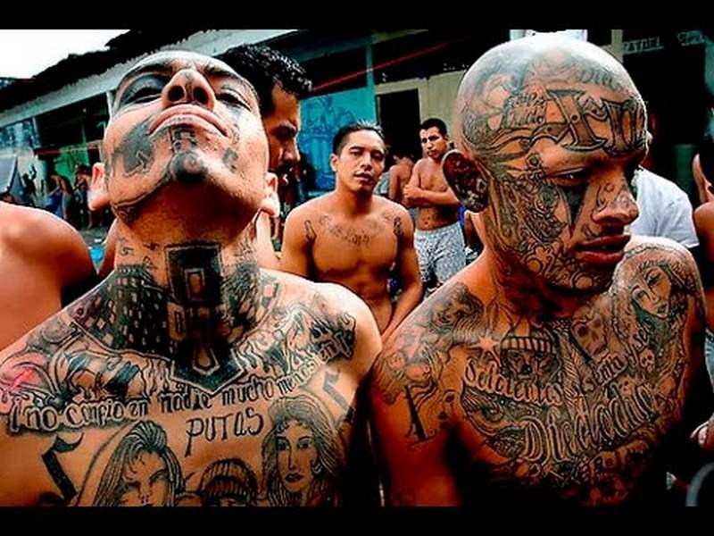Mafia Mexico - những kẻ máu lạnh nhất thế giới - 1