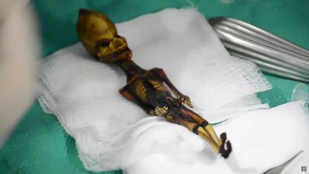 """Sự thực đằng sau bộ xương """"người ngoài hành tinh"""" tí hon ở Chile"""