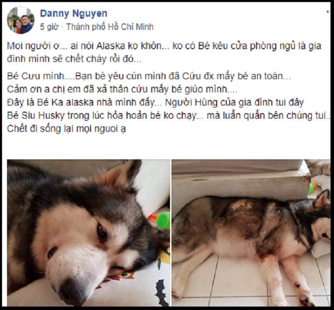 Hai chú chó dũng cảm cứu cả gia đình trong vụ cháy khiến 13 người chết ở SG