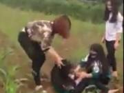 Tin tức trong ngày - Xôn xao clip nữ sinh bị đánh hội đồng giữa cánh đồng ngô