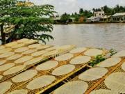Du lịch - Tây Ninh lần đầu tiên tổ chức festival bánh tráng