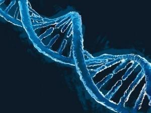 """Thế giới - Truy tìm 13 người giấu mặt có ADN """"siêu nhân"""""""