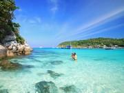 Du lịch - Đến Thái Lan không lặn biển Coral bạn sẽ tiếc hùi hụi