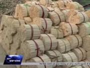 Video An ninh - Rúng động đũa tre ngâm, tẩm hóa chất mua từ… Văn Điển