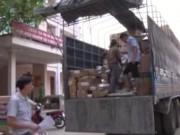 Video An ninh - Chặn xe tải chở 1 tấn thịt thối tuồn vào TP.HCM