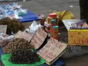 Thị trường - Tiêu dùng - Cẩn trọng với thảo dược bán dạo