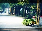 Du lịch - Hà Nội - Chuyện của phố