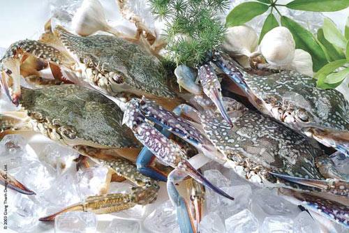 15 món ăn hải sản ngon nổi tiếng không nên bỏ qua - 4