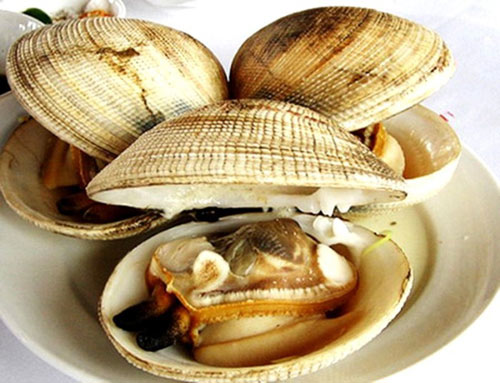 15 món ăn hải sản ngon nổi tiếng không nên bỏ qua - 10