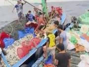 Tài chính - Bất động sản - Sẽ có gói tín dụng 1.500 tỉ cho ngư dân