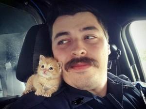 Thế giới - Mỹ: Cảnh sát nổi tiếng vì mang mèo con đi tuần tra