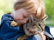 Sức khỏe đời sống - Coi chừng tử vong khi chơi với mèo