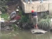 Video An ninh - TP.HCM: Dân đổ xô đi vớt cá trên kênh Nhiêu Lộc sau mưa