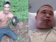 Bạn trẻ - Cuộc sống - Chàng trai gặp họa khi nuôi rắn độc làm thú cưng