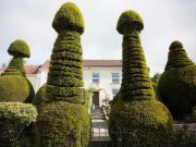 """Phi thường - kỳ quặc - Biệt thự có hàng rào cây hình """"của quý"""" khổng lồ ở Anh"""