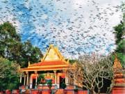 Du lịch - Khám phá những ngôi chùa độc đáo ở Sóc Trăng