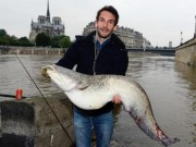 Thế giới - Người Pháp bắt cá khổng lồ giữa Paris