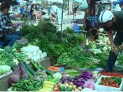 Thị trường - Tiêu dùng - Hơn 5% lượng rau bán trên thị trường nhiễm chất cấm