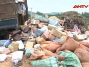 Thị trường - Tiêu dùng - Tiêu hủy hàng chục tấn măng thối và dấm độc làm từ axit