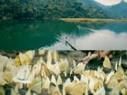 Du lịch - Ba Bể đẹp tựa xứ thần tiên mùa bướm trắng