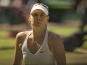 """Thể thao - Sharapova """"cáo già"""" chứ chẳng phải """"thỏ non"""""""