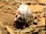 Thế giới - Phát hiện vật thể hình sọ quái vật trên sao Hỏa