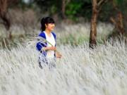 Tin tức trong ngày - Cánh đồng cỏ lau đẹp như tranh giữa Sài Gòn