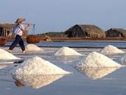 Thị trường - Tiêu dùng - Giá muối chỉ 200 đồng/kg, diêm dân điêu đứng
