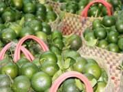 Thị trường - Tiêu dùng - Rau xanh, trái cây… tăng giá mạnh do vào mùa mưa