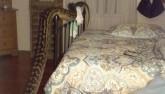 Úc: Trăn khổng lồ chui vào nằm chung giường giữa đêm