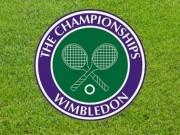 Thể thao - Kết quả phân nhánh Wimbledon 2016 - Đơn nam