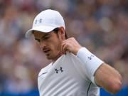 Thể thao - Wimbledon: Con đường của Murray dễ hơn Djokovic