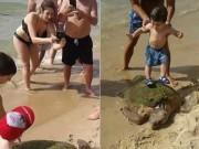Du lịch - Rùa biển quý hiếm bị du khách lôi lên bờ đánh đập
