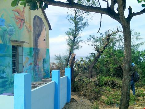 Độc đáo ngôi làng bích họa ở TP Tam Kỳ - 3